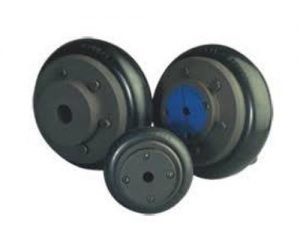 Cast Iron Flexible Tyre Coupling